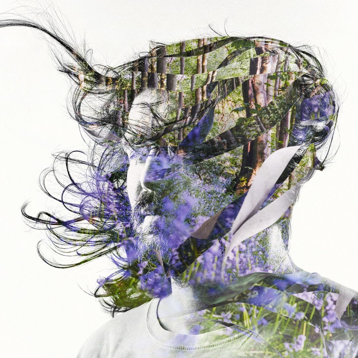 """Bibio Creates a Type of Dream Folk with """"Curls"""" (track review)"""