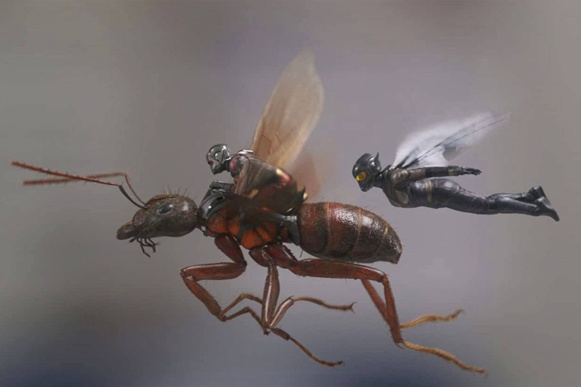 The Obstacles in 'Ant-Man and the Wasp' Are Not Typical of MCU